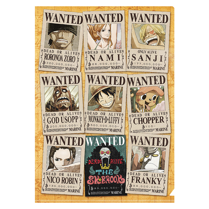 Folder One Piece : Wanted Team